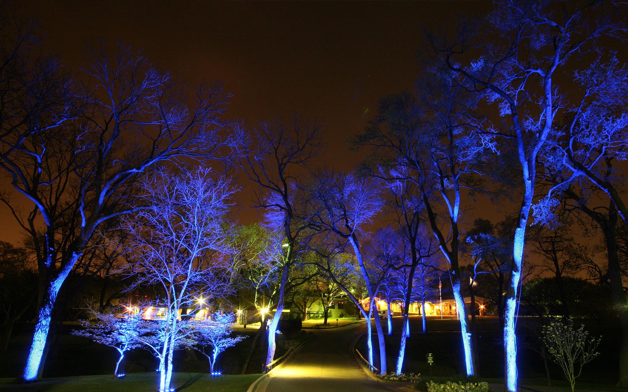 Landscape Lighting at the Northwood Club